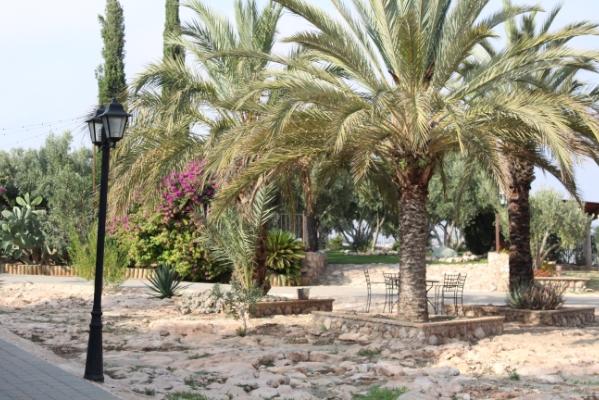 Finca Lomamour - Plaza de las Lastras - Almería