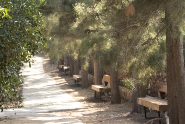 Finca Lomamour - Paseo de las Casuarinas - Almería