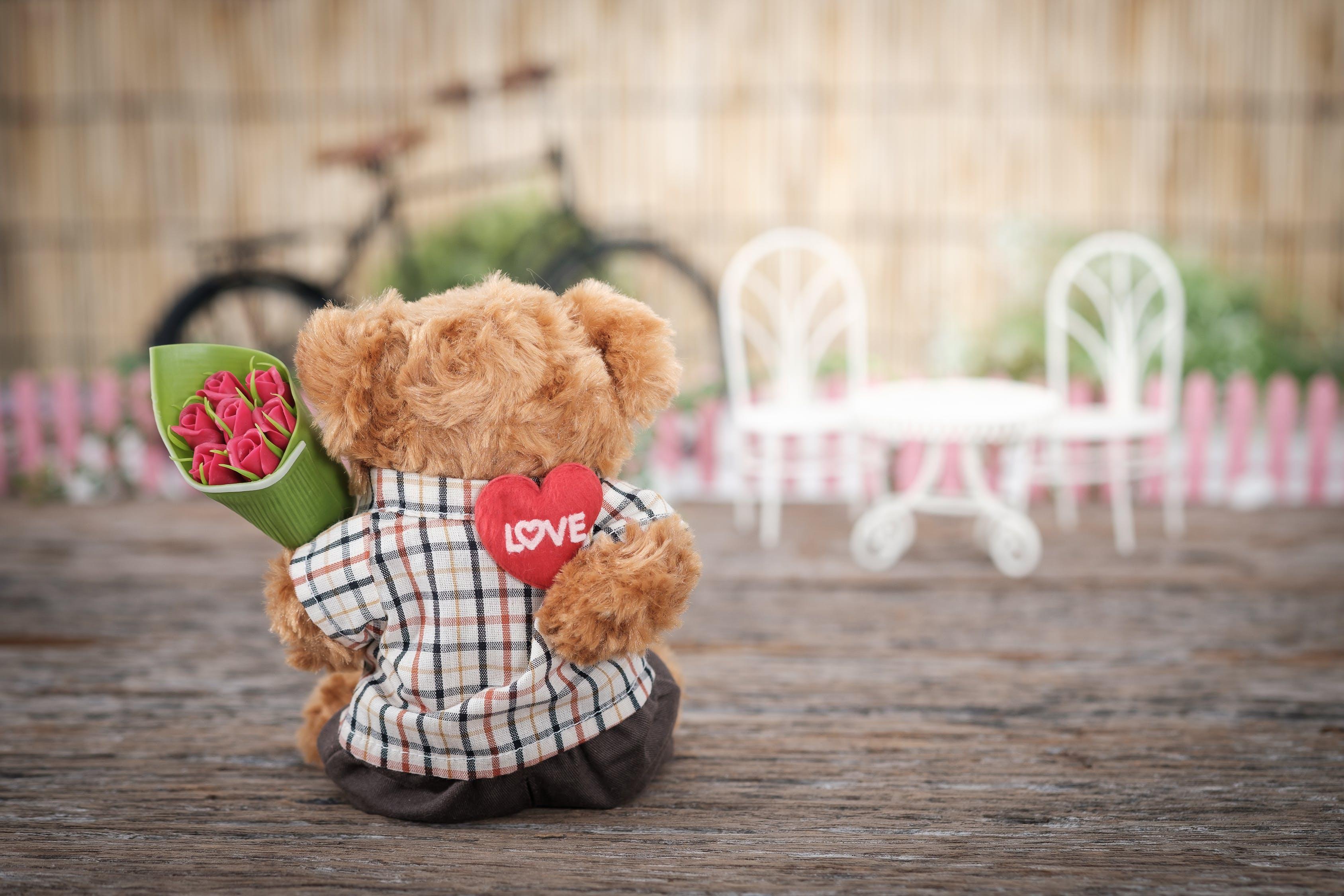 Boda en San Valentín - Finca Lomamour